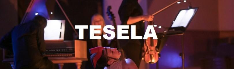 TESELA 3